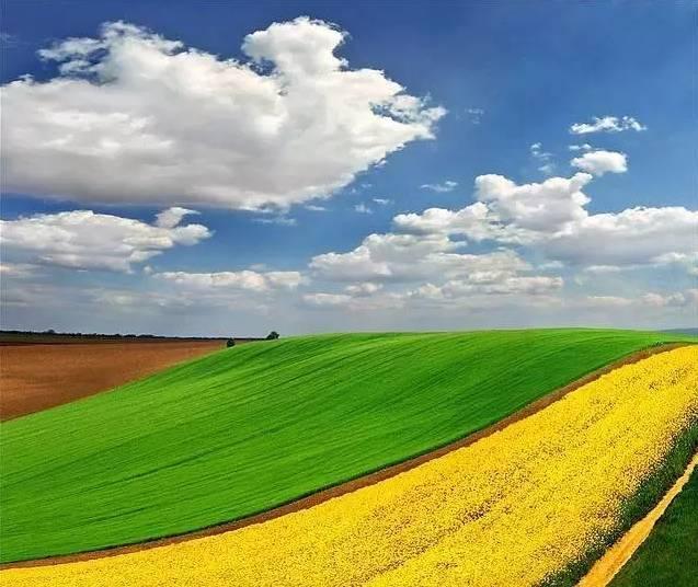 西欧平原的风景图
