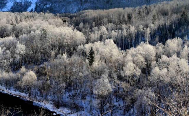 定了!第22届中国吉林国际雾凇冰雪节活动最终方案公布!图片