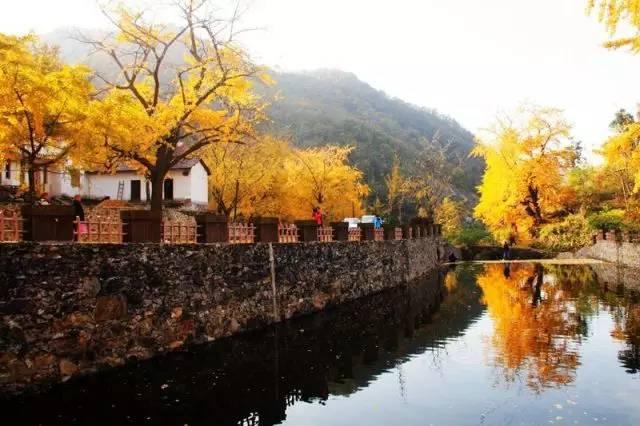 景点:双峰山风景区,白兆山风景区,安陆银杏谷, 汤池温泉,观音湖.
