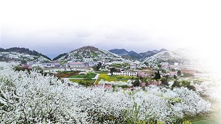 仙桃冬天风景图片